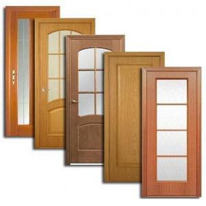 Двери, дверные блоки Славянки